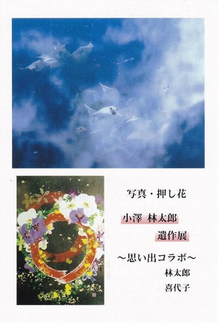 Img_20150417_0001_4